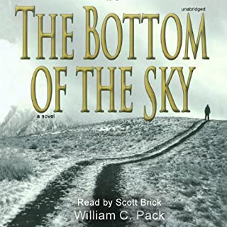 The Bottom of the Sky audiobook cover art