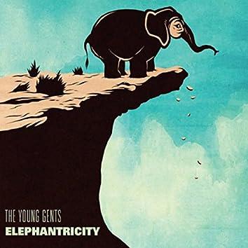 Elephantricity