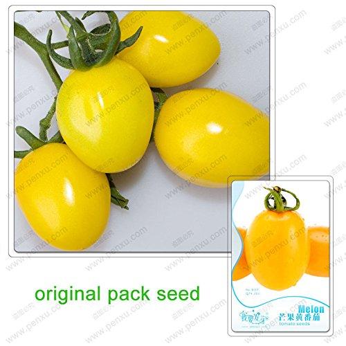 20 Graines/Pack, Mango graines de tomate jaune semées facilement l'agriculture, les graines de tomates de fruits, légumes biologiques non-OGM