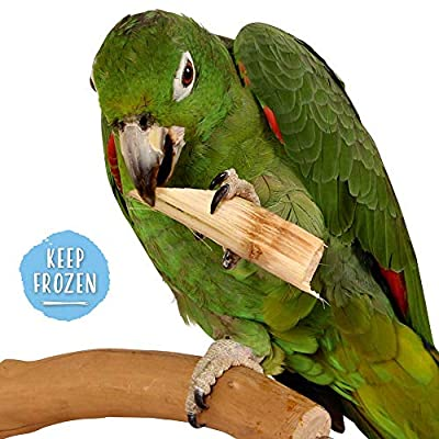 Sugar Cane - Natural & Nutritious Parrot Treat - 150g from Northern Parrots