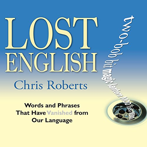 Lost English audiobook cover art