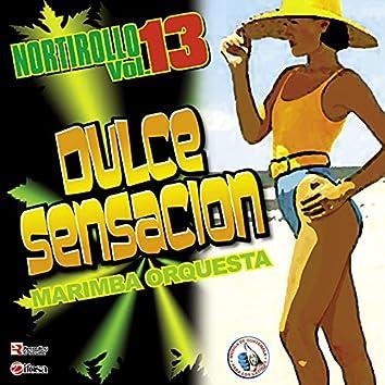 Nortirollo Vol. 13. Música de Guatemala para los Latinos