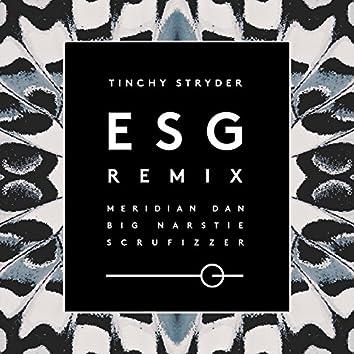 ESG (Remix)