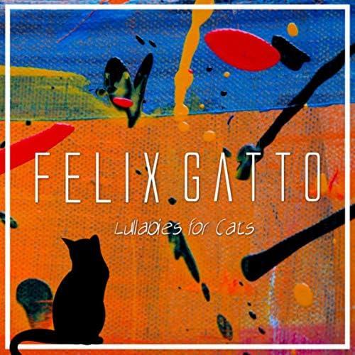 Felix Gatto