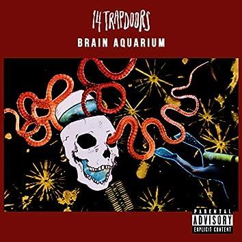 Brain Aquarium