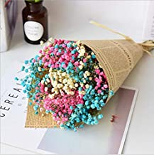 XINFENG Natural Gypsophila Baby's Breath Dried Flowers Bouquet Bundle, Desktop DIY handcrafts Floral Full Stars Dry Flower Bunch Arrangements Decorative for Home Office Wedding Store (Mixed 3 Color)