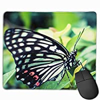 アゲハチョウ マウスパッド 運びやすい オフィス 家 最適 おしゃれ 耐久性 滑り止めゴム底付き 快適操作性 30*25*0.3cm