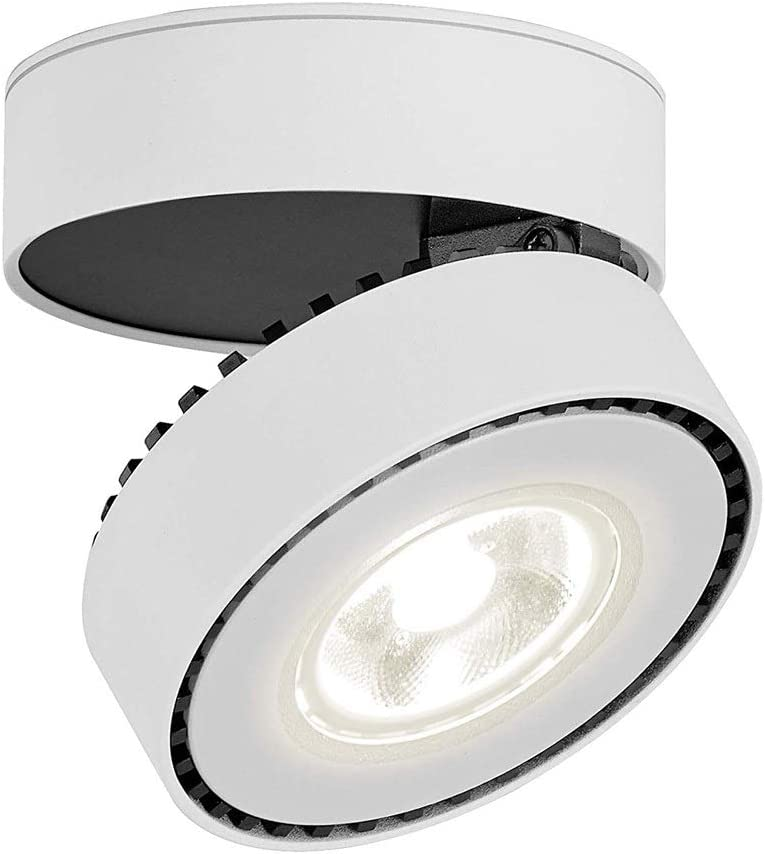 Spotlight Angle A Minneapolis Mall surprise price is realized Orientable Ceiling Down Adjust 360 Degree Lights