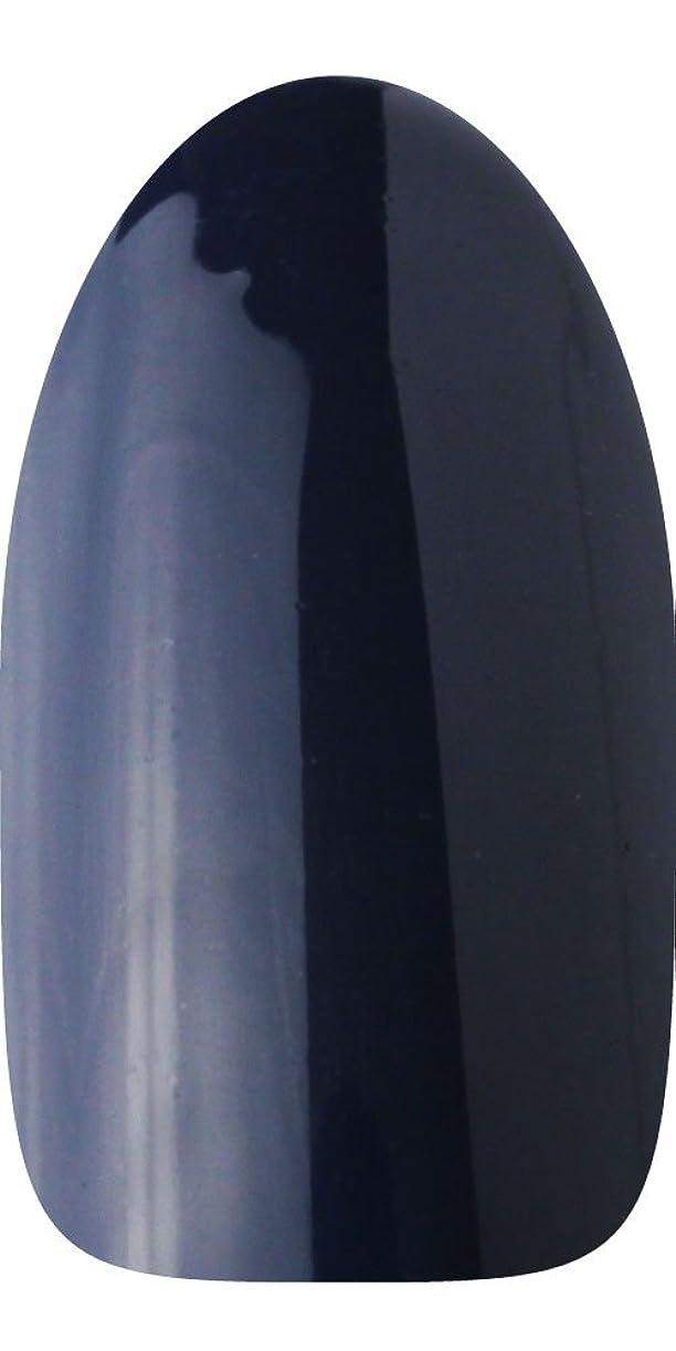 嵐の拡大するグレーsacra カラージェル No.174 藍染