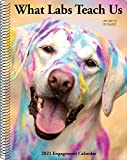 What Labs Teach Us 2021 Engagement Calendar (Dog Breed Calendar)
