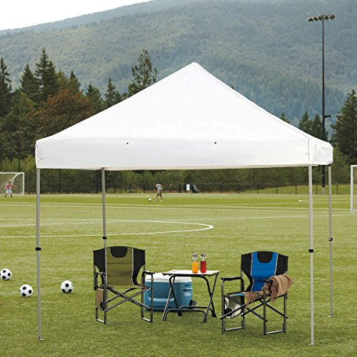 ProShade Professional-Grade 10' x 10' Instant Canopy with sidewall kit