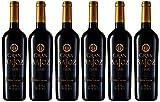 Bajoz - Gran Vino Tinto Botella 75 cl D.O. Toro