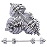 Brakites Adjustable Weights Dumbbells Set, Free Weights 2-in-1 Sets 66lbs, Home Fitness Equipment for Men and Women Gym Work Out Exercise Training with Connecting Rod Used as Barbells (Silver)