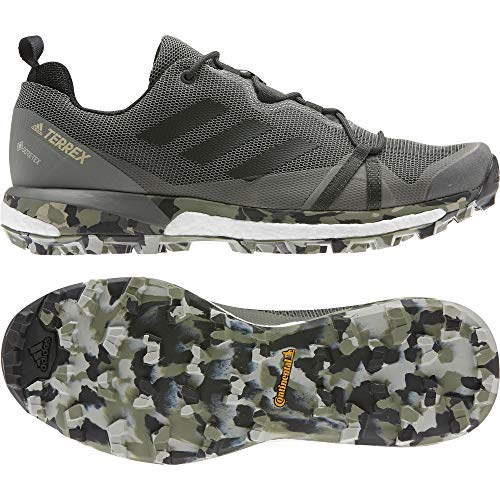 adidas Terrex Skychaser LT GTX, Zapatillas Deportivas para Hombre, Legend Earth/Core Black/Feather Grey