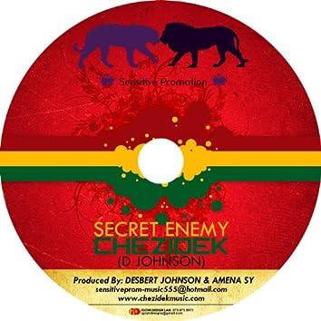 Secret Enemy - Single