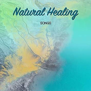 18 canções de cura natural para revigorar corpo e alma