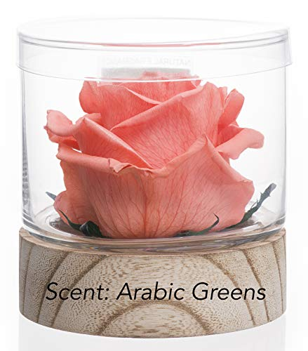 Home Scent 12oz Real Fragrance Flower Lasts 4 Months Aromatherapy Birthday Gifts for Women Gifts for mom. Room Decor Bathroom Decor (Peach/Scent Arabic Green)