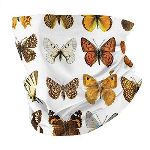 Q&SZ Sweatshirt Outdoor Headband Butterflies Decorations Butterfly Miracle Wings Joy Freedom Spiritual Feminine Divine Sign Concept Work Multi Scarf Neck Gaiter Face Bandana Scarf Head Scarf
