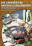 Die Chinesische Dreikielschildkröte: Chinemys reevesii (Art für Art: Terraristik)