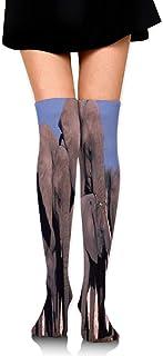 Calcetines de constelación del zodiaco fabuloso calcetín de mujer accesorio calcetín para niñas mujeres