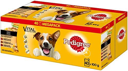 Pedigree Vital Protection Hundenassfutter im Beutel – Hundefutter in Sauce mit Huhn, Rind, Geflügel & Lamm in Sauce – 40 x 100g Großpackung