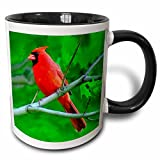 3dRose 3dRose Red Cardinal - Two Tone Black Mug, 11oz (mug_3121_4), Black/White