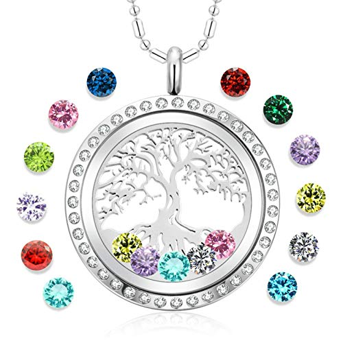 Tree of Life Floating Charm Living Memory Lockets Pendant Necklace Stainless Steel Toughened Glass Gifts for Mom Family (dp-03)