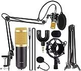 Techtest BM800 Broadcasting Studio Recording Condenser Microphone Mic Kit with Plastic Shock Mount Adjustable Suspension Scissor Arm Stand Pop Filter (Need extra phantom power)