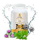 Capsulas vegetales AGNI de Cardo mariano, Diente de leon, Ortiga I 120 capsulas - 600 mg I Protector...