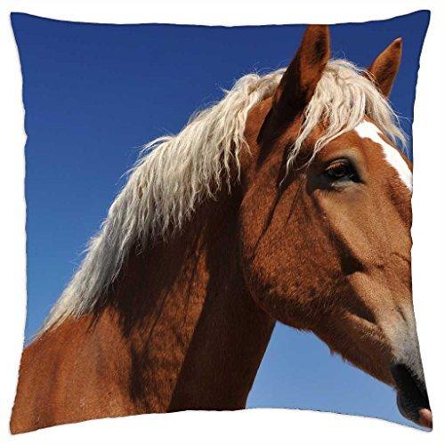 Belgisch Paard - Kussenhoes gooien (18