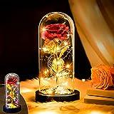 Amasava Rosa Eterna La Bella y Bestia con Luz LED Dos Modos en Cúpula de Vidrio y Tarjeta de Felicitación Decoraciones para el hogar para el Día de Madre Mujer Novia Día de San Valentín (Rojo)