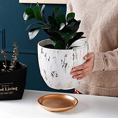 UimimiU Ceramic Succulents Flower Pot, Modern Simple Style Apple Plant Pot Round Indoor Home Decoration Planting Pots Have Drainage Hole, for Cactus, Green Plants, Herbs Plants (Size : 1314cm)