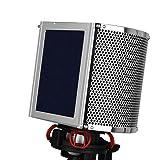 Professional Simple Studio Mic - Pantalla para micrófono (filtro acústico, pantalla de grabación de viento)