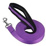 Vivifying Dog Training Lead Leash, 32FT/10M Long Nylon Training Dog Leash for Pet Tracking Training Obedience Lead Leash (Purple)