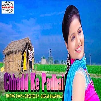 Chhadd Pe Padhai