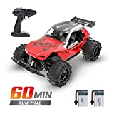 DEERC Remote Control Car High Speed RC Racing Cars 20 KM/H, 2.4 GHZ Fast Toy Car for Kids, 2 Rechargeable Batteries for...