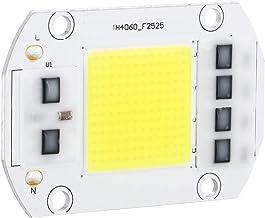 100W 220V LED-chip, koud wit High Power LED-chip Hoogspanning COB LED-dimmer Gloeilamp kralen Lichtbron voor binnen Buiten...