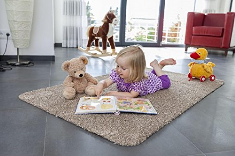 Astra Fußmatte Fußmatte Fußmatte Saugaktiv Beige 90x150 cm B00LZUJGL8 e78fc7