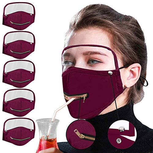 MmNote Safety Shield Reusable Goggle Zipper Shield Face Visor Transparent Anti-Fog Layer Protect Eyes with Detachable