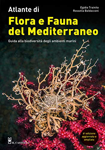 Atlante di flora e fauna del Mediterraneo. Guida alla biodiversità degli ambienti marini. Ediz. illustrata