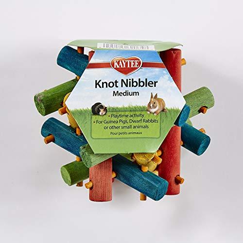 Kaytee - Nibbler de nuez para animales pequeños, Verde, Medium, 4'