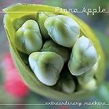 Songtexte von Fiona Apple - Extraordinary Machine