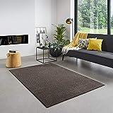 Carpet Studio Santa Fe Teppich Wohnzimmer 115x170cm, Wohnzimmerteppich für Schlafzimmer, Esszimmer & Wohnzimmer, Einfach zu Säubern, Weiche Oberfläche, Kurzflor - Braun
