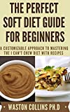 THE PERFECT SOFT DIET GUIDE FOR BEGINNERS: A Customizable Approach to Mastering The I Can't Chew Diet With Recipes