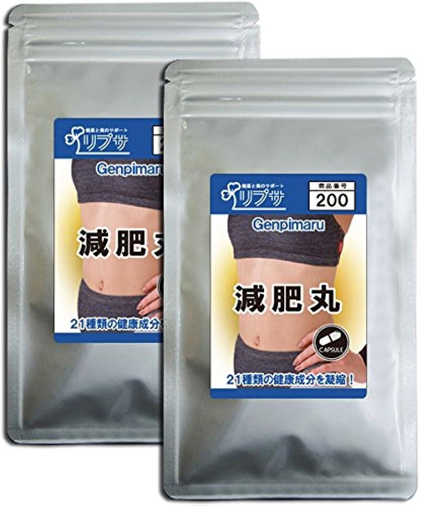 意味君主制サンダー減肥丸 約3か月分×2袋 C-200-2