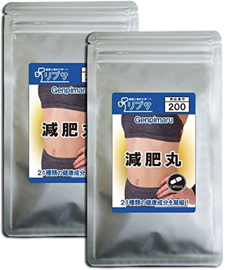 熟練した正確な所属減肥丸 約3か月分×2袋 C-200-2