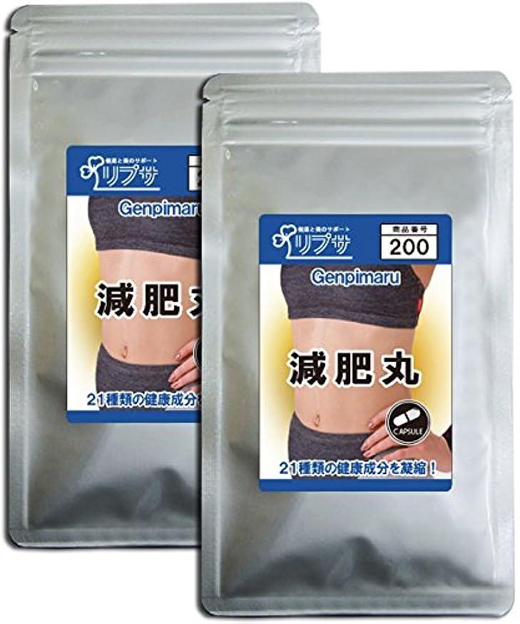 ピューヒット系統的減肥丸 約3か月分×2袋 C-200-2