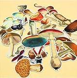 BLOUR 26 unids/Bolsa Pegatinas pintadas a Mano Planta Colorida Serie de Setas DIY álbum de Recortes Diario Feliz planificador decoración Pegatinas
