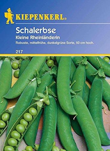 Erbsen - SchalErbsen - Kleine Rheinländerin von Kiepenkerl