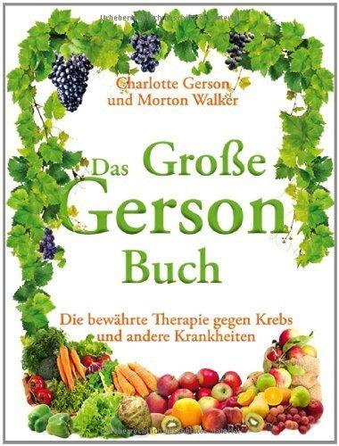 Das Große Gerson Buch by Unknown(1904-11-11)